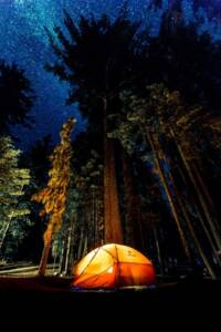 Camping in forest during night time